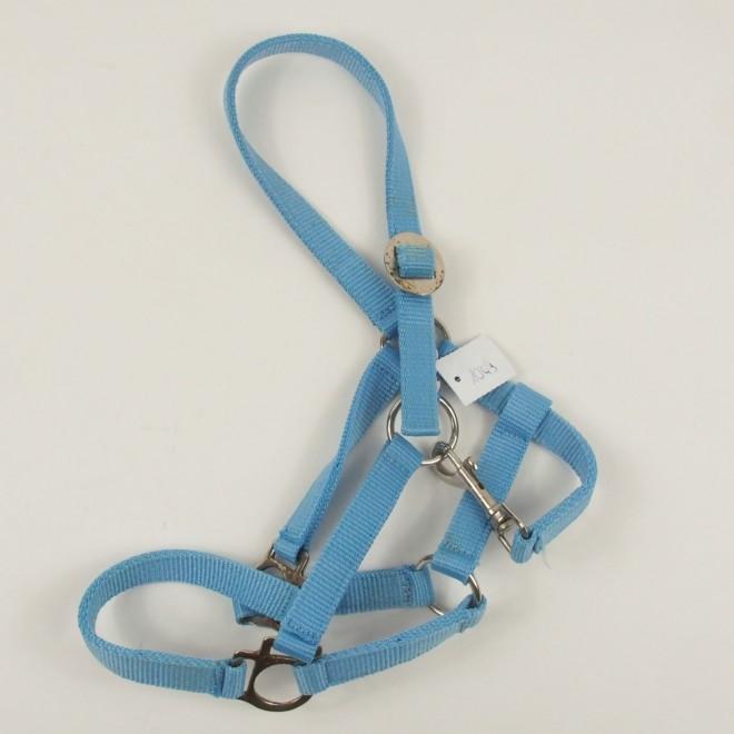 Nylon-Shetty - oder Fohlenhalfter, hellblau, guter Zustand
